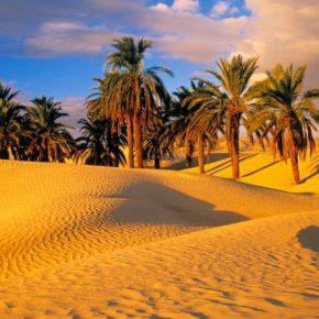Yêu như cát